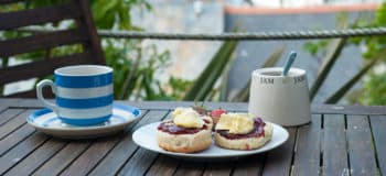 cornwall-cream-scones-food