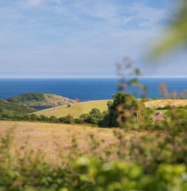 7 reasons to take a holiday in Looe