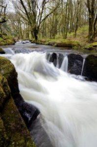golitha-falls
