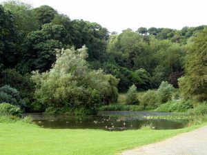 mount-edgcumbe-country-park