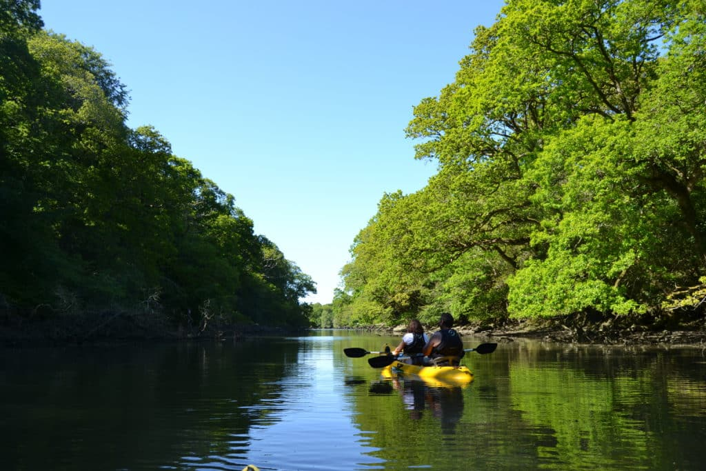 Kayaking on a Cornish river